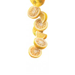Yuzu lemon syrup 1L